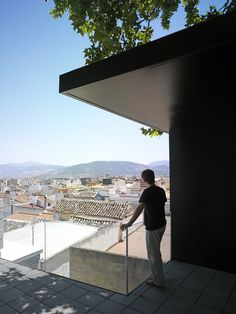PLAZA DE LOS ROZALES en Jaén  Un paseo entre las copas de los árboles