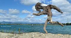 Driftwood art in Hungary by tamas kanya by tom-tom1969 on DeviantArt
