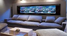 Beautiful In Wall Aquarium Designs. 50 aquarium designs that will generate aquarium ideas for your own aquarium table aquarium wall or aquarium decorations. Planted Aquarium, Aquarium Terrarium, Home Aquarium, Aquarium Design, Aquarium In Wall, Cool Fish Tanks, Saltwater Fish Tanks, Saltwater Aquarium, Aquarium Fish Tank