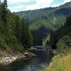 North Fork of the Clearwater River, Idaho visit www.visitnorthcentralidaho.org to find out more and see current events!