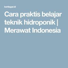 Cara praktis belajar teknik hidroponik | Merawat Indonesia
