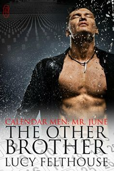 The Other Brother (Calendar Men Book 6) by Lucy Felthouse, http://www.amazon.co.uk/dp/B00KNEU2VK/ref=cm_sw_r_pi_dp_60hJtb1MN65HC