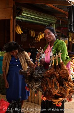 Chicken takeaway, S. Cristobal de Las Casas, Chiapas, Mexico