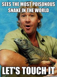"""original overly manly man""  ugh, i miss this guy. I used to watch Crocodile Hunter and Crocodile Hunter Diaries ALL the time Overly Manly Man, Irwin Family, Gone Too Soon, Terri Irwin, Steve Irwin, Reptiles, Lizards, Amphibians, Australian People"