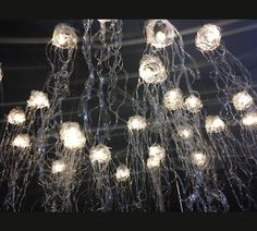 Jellyfish lights made from recycled plastic bottles .-Qualle Lichter aus recycelten Plastikflaschen … Jellyfish lights made from recycled plastic bottles - Recycled Bottles, Recycle Plastic Bottles, Jellyfish Light, Transitional Chandeliers, Recycling, Reuse, Upcycle, Ceiling Lights, Contemporary