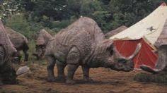 Image result for kaprosuchus primeval head