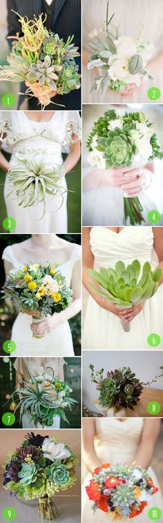 Top 10: Succulent and airplant bouquets