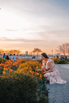 Spring has arrived in NYC! Here is a list of the top 6 favorite things to do in nyc during spring including the best locations to see the blossoms. Spring Aesthetic, Aesthetic Colors, Spring Photography, Travel Photography, Stuff To Do, Things To Do, Nyc Spring, Visiting Nyc, Bloom Where You Are Planted