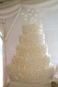 Butterfly wedding cake, white on white (source: cakes from the sweetest thing (Susan), via Flickr)