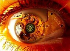 魅惑的な「目」の画像 21選   DDN JAPAN