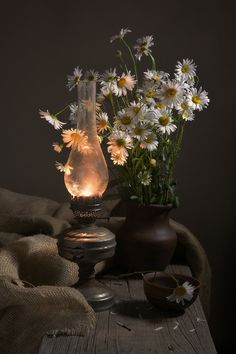 Discovered by Find images and videos on We Heart It - the app to get lost in what you love. Flower Aesthetic, Aesthetic Images, Aesthetic Vintage, Aesthetic Wallpapers, Dark Photography, Still Life Photography, Flor Iphone Wallpaper, Old Lanterns, Still Life Photos