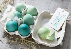 Le curcuma transforme des œufs bleus en œufs verts.