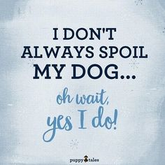 I don't always spoil my dog...