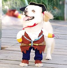 Idepet New Funny Pet Clothes Pirate Dog Cat Costume Suit Corsair Dressing  up Party Apparel Clothing 985d17ed2