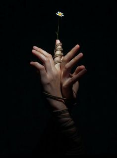 hand photography Photographer Aaron McPolin researched the erotic art of Shibari to create a series of photography highlighting the grace of rope bondage. Hand Photography, Portrait Photography, Photography Guide, Exposure Photography, Photography Lighting, Erotic Photography, Photography Editing, Vintage Photography, Maternity Photography