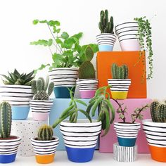 Items similar to Hand Painted Plant Pot - Orange Stripe on Etsy A hand painted plant pot with a bright orange stripe design. Sealed for both water and UV protection. All orders are sent via first class post within the UK Cacti And Succulents, Potted Plants, Indoor Plants, Painted Plant Pots, Painted Flower Pots, Plantas Indoor, Fleurs Diy, Pot Plante, Cactus Y Suculentas