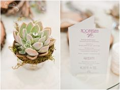 DJ + Corlene | Winter Wedding Green Leaves « South African wedding photographer based in Pretoria, Gauteng | D'amor Photography Wedding Table, Our Wedding, South African Weddings, Pretoria, Green Leaves, Dj, Photographs, Wedding Photography, Place Card Holders