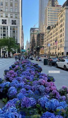New York Life, Manhattan Nyc, Brooklyn Nyc, City That Never Sleeps, Travel Aesthetic, Daydream, New York Skyline, Street View, Places