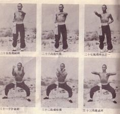 The 36th Blogger of Shaolin. A rare look at Gordon Liu demonstrating his traditional Hung Gar forms.