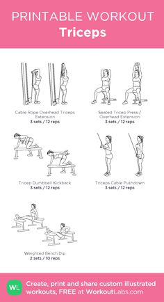 Triceps my custom workout created at WorkoutL Gym Workout Plan For Women, Gym Workout For Beginners, Gym Routine, Workout Schedule, Bicep And Tricep Workout, Printable Workouts, Easy Workouts, Weight Lifting Workouts, Weight Exercises