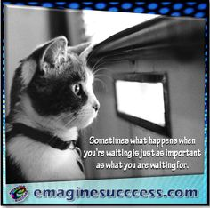 Take time to enjoy the time you have. Amazing things may happen. #waitandsee #bartism http://emaginesuccess.com