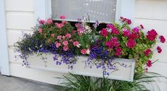 window box1