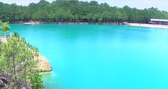 KTRE Anchor John-Carlos Estrada takes you on a tour of a East Texas hidden treasure -- the Blue Hole. The natural spring made by accident in the -- is… Texas Vacations, Texas Roadtrip, Texas Travel, Vacation Places, Vacation Spots, Places To Travel, Places To See, Hidden Places, Vacation Destinations