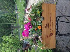 Wine Box Planter #cheers