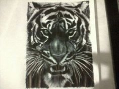 Pen sketch of a tiger Pen Sketch, Artworks, Tattoos, Animals, Tatuajes, Animales, Animaux, Tattoo, Animal
