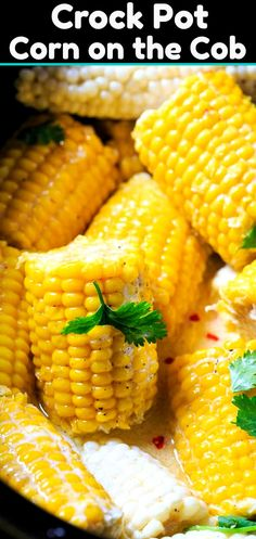 Crock Pot Corn on the Cob soaks up so much flavor! Fresh summer corn is one of my favorite things and seeing that this Best Way To Cook Corn on the Cob Recipe is one of the top 4 recipes on Spicy Southern Kitchen, I Crock Pot Corn, Crock Pot Potatoes, Crock Pot Tacos, Crock Pot Dump Meals, Boneless Turkey Breast Recipe, Hashbrown Casserole Recipe, Scalloped Potato Recipes, Crock Pot Meatballs, Southern Kitchens