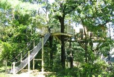 treehouse | Treehouse - an idea and building journal