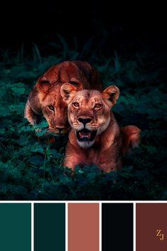 ZJ Colour Palette 267 #colourpalette #colourinspiration