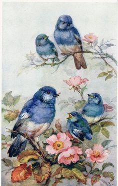 Beautiful Art Vintage, Decoupage Vintage, Vintage Images, Pretty Birds, Beautiful Birds, Art And Illustration, Bird Pictures, Bird Prints, Bird Art