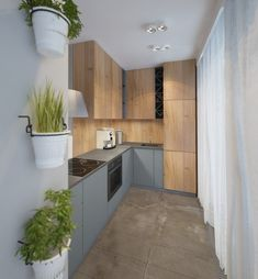 A small kitchen is plenty of room for growing potted herbs, as long as you do it on the wall.