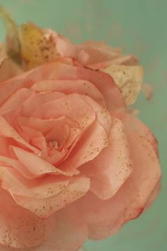 Coffee Filter Roses- these would be good in creams & tans.