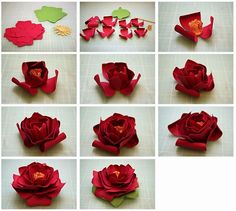 Lots of 3D Paper Flower tutorials