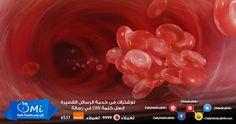 علاج جلطات الأوردة العميقة وطرق الوقاية منها http://www.dailymedicalinfo.com/?p=17318