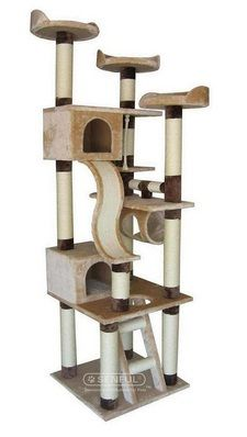 Amazing Inspiration From Germany Elegant Amp Simple Cat