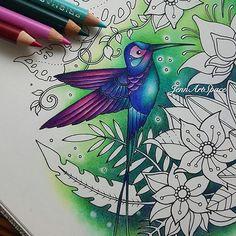 The humming birds from the Magical Jungle by Johanna Basford. . . . #magicaljungle #johannabasford #johannabasford_repost #bayan_boyan #boracolorirtop #artecomoterapia #art #colorista #adultcolouring #adultcoloring #coloriagepouradulte #prismacolorpremier #fabercastellpolychromos #colouringforadults #coloring_masterpieces #colorindolivrostop #jardimsecreto #livrosdecolorir #terapianojardim