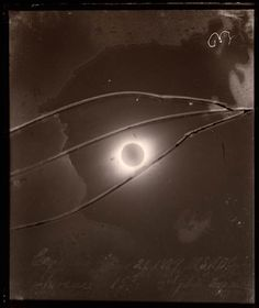 Solar eclipse of December 21, 1889 (Cayenne). Contact print from the original glass negative. Lick Observatory Plate Archive, Mount Hamilton. University of California at Santa Cruz.