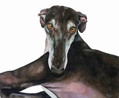 Spanish Greyhound Galgo Espanol Sighthound Ana, Dog Art print size 10x10 inch by TanjaOnTheWall on Etsy https://www.etsy.com/listing/172103694/spanish-greyhound-galgo-espanol