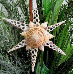 Beach Decor Star Shell Christmas Ornament