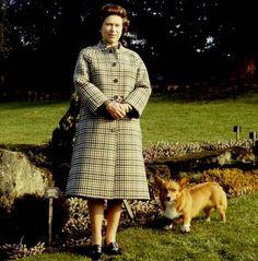 Queen E and Royal Corgi