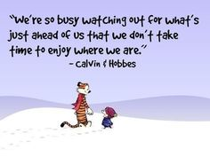 Calvin Und Hobbes, Calvin And Hobbes Quotes, Calvin And Hobbes Comics, Now Quotes, Great Quotes, Life Quotes, Funny Quotes, Inspirational Quotes, Calvin And Hobbes