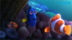 Pixar release first full length trailer for Finding Dory.: Pixar release first full length trailer for Finding Dory Disney Pixar, Disney Movies, Disney Characters, Ellen Degeneres, New Trailers, Movie Trailers, Trailer 2, Nemo Dori, Blue Tang
