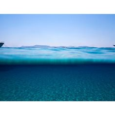 Marina-Vernicos-sea-through-2013-yatzer-4.jpg (714×541) ❤ liked on Polyvore featuring backgrounds