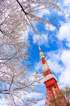 Tokyo Tower, Japan - Photographers 10viral:Chikako Yagi