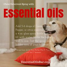 Chew Deterrent Spray with Essential Oils