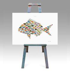 Fish Art Gallery Fine Art Marine Life Prints