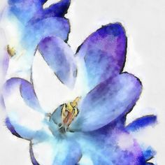 Watercolor Crocus - tattoo idea 8531 Santa Monica Blvd West Hollywood, CA 90069 - Call or stop by anytime. UPDATE: Now ANYONE can call our Drug and Drama Helpline Free at 310-855-9168.